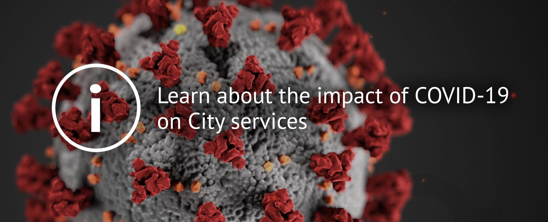Learn about modified services  from the City